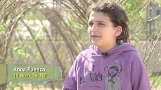 15 anys del programa Escoles Verdes