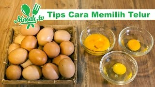Tips Cara Memilih Telur | Kiat #066
