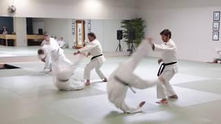 Ann Arbor Jujutsu Kihon Kata | Japanese Martial Arts Center
