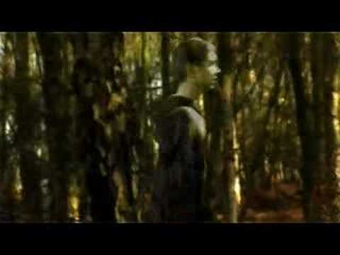 Lazarus - Porcupine Tree (edit) Video