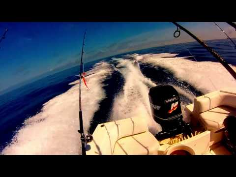Offshore Fishing - Grand Isle, La 6/5/14 - 6/8/14