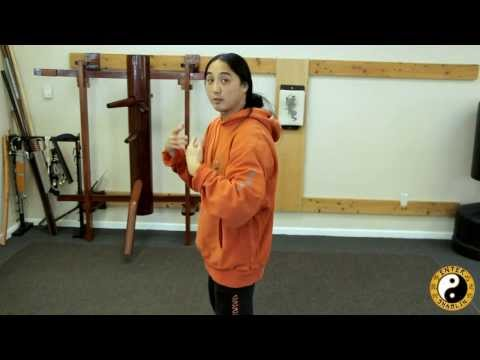 Tai Chi Chuan Yang Style Complete Section 1   Combat Breakdown   Qiqong Training video