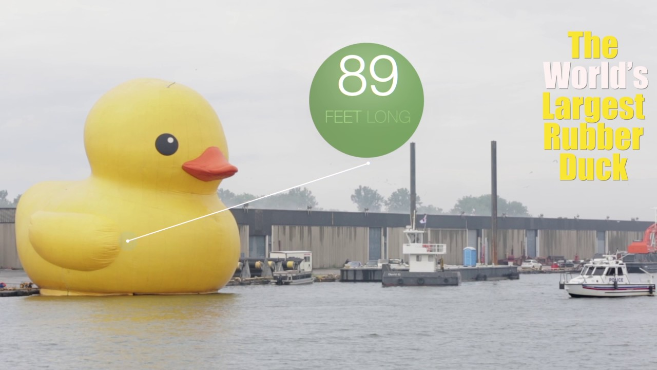 Giant rubber duck floats around the world