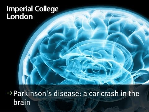 Parkinson's disease: a car crash in the brain