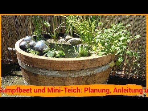 Diy Mini Teich Furs Wohnzimmer Selbst Bauen Diy Deutsch Full Hd