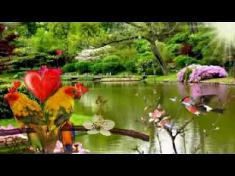 Rela - Inka Christie video