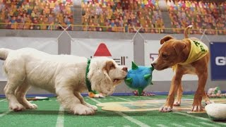 Furry Firsts | Puppy Bowl