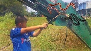 Đồ chơi trẻ em bé pin săn Rắn trên xe máy xúc – máy đào đất  ❤ PinPin TV ❤ Baby toys snake