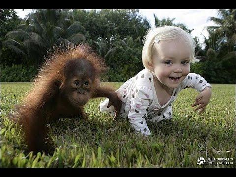Смешные Обезьянки и Дети! Funny Monkeys and Children!