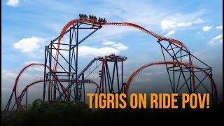 Tigris On Ride POV