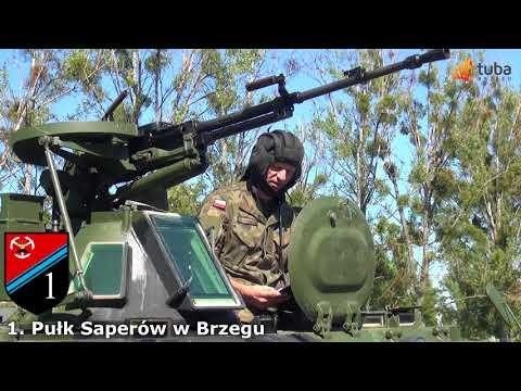 Narodowe Czytanie 2017 Wesele 1  Pułk Saperów w Brzegu