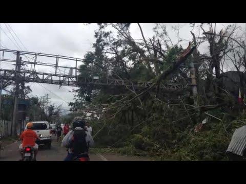 Typhoon Glenda  Aftermath - Daraga  Albay Bicol University Daraga and BU Main  area  (Part -1)