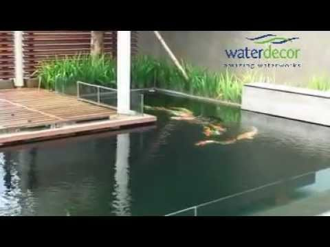 kolam ikan koi dengan nexus - youtube