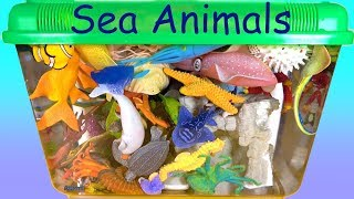 Playset with Sea Animals Aquarium Fun Play Toys for Kids Learn Wild Animal Names