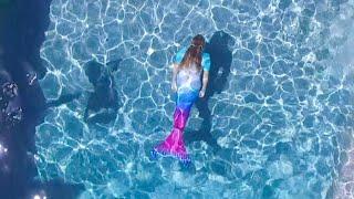 download lagu Live Mermaids In The Swimming Pool Girls Become Real gratis