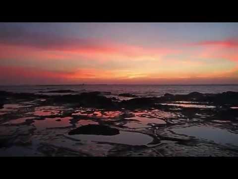 Taiwan Wang An Marine Conservation Project
