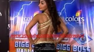 Hot Mahek Chahal reveals her plan to survive in Bigg Boss 8