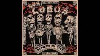 Los Lobos - Colas