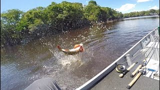 Ambushed by a Pack of Giant Amazonian Fish (New PB!)
