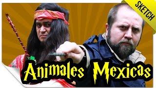 Animales Mexicas y Dónde Encontrarlos   SKETCH   QueParió! ft. Vampipe