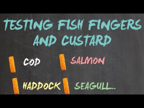 Testing Fish Fingers and Custard