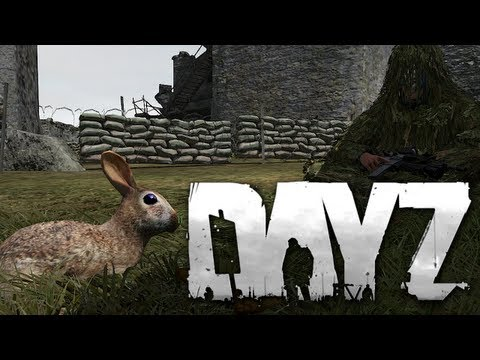 Funniest DayZ Hacker Ever
