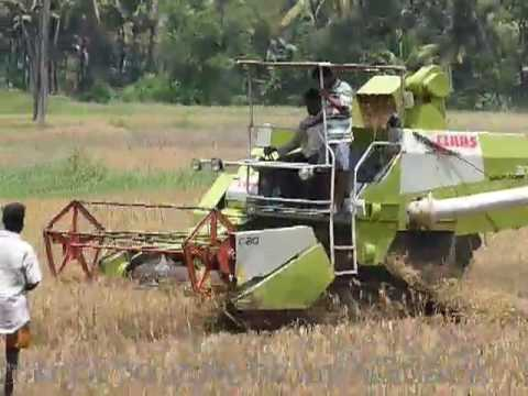 Paddy Rice Harvesting/ Processing machine