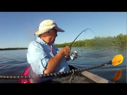 Kayak Fishing, Mangrove Tunnel, Reds,Trout