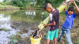 Unique Fish Trapping - Smart Boys Make Fish Trap Using Banana Tree | New Technique Of Catching Fish
