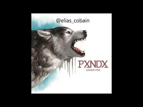 PXNDX - Sangre fría [DISCO COMPLETO] (DESCARGA)