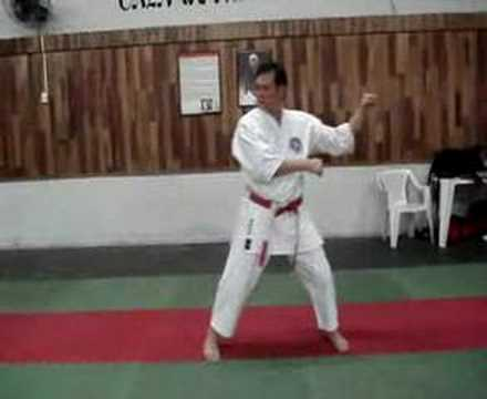 Wong Karate Kata Naihanchi Shodan - Shorin-ryu Shin Shu Kan Image 1