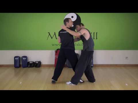 7 Star Mantis Kung Fu: Double Raised Hooks