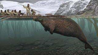 A Giant Extinct Sea Cow