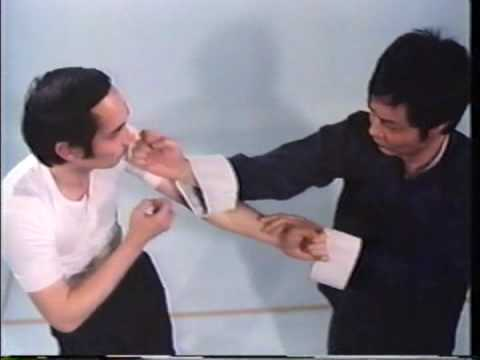 Wing Chun Basic Techniques part 1 Image 1