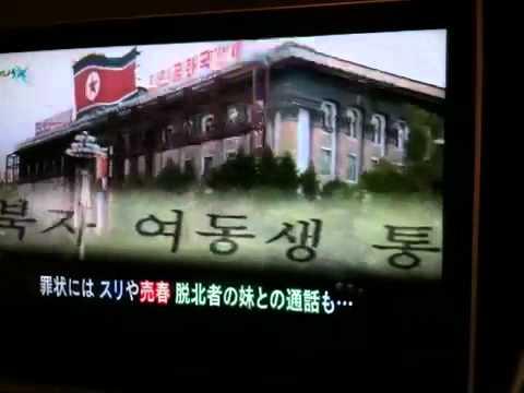 Mysterious north korea
