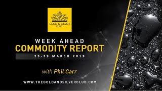 WEEKLY COMMODITY FORECAST: Gold, Silver, Platinum & Oil Price: 25 - 29 March 2019