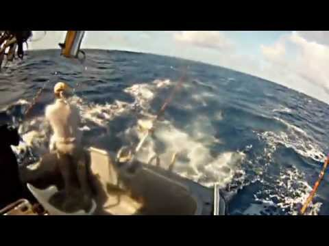 Girls Catch Giant Fish while Deep Sea Fishing in Hawaii!  Yellow Fin and Mahi Mahi