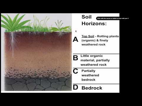 Soil formation for Soil and its formation