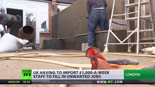 Dirty Work: UK importing migrants to fill employee shortages Image
