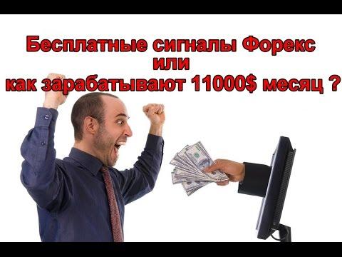 Как заработать в интернете новичку с нуля 1000$