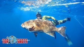 Spearfishing Baja Gulf Grouper