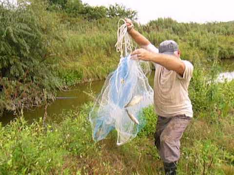 рыбалка на кастинговую сеть видео на речке