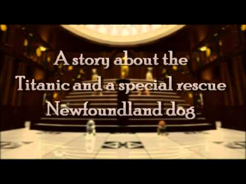 Titanic Dog animated by Tobi Jessop