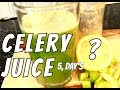 Drink A Glass of Celery Juice For 5 Days'This Will Happen To Your Body  | Chef Ricardo Cooking