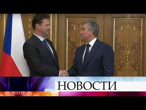 Вячеслав Володин встретился с председателем палаты депутатов парламента Чехии.