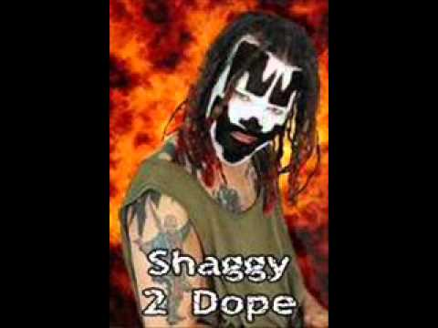 Shaggy 2 Dope Tribute Pull Me Over
