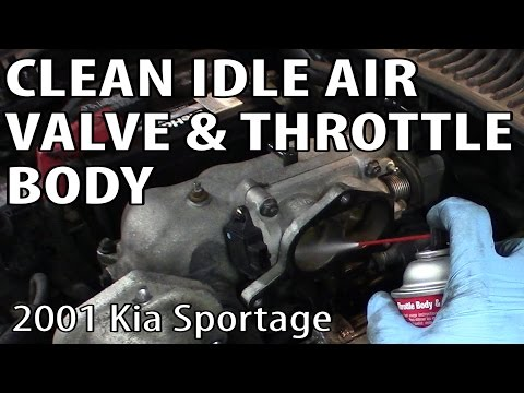 Cleaning an Idle Air Control Valve and Throttle Body (Kia Sportage)