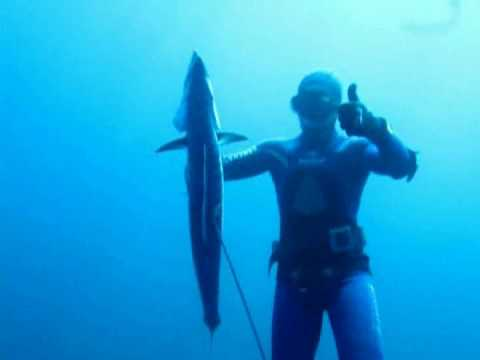 Baja Spearfishing with Pistoleros del Mar 09