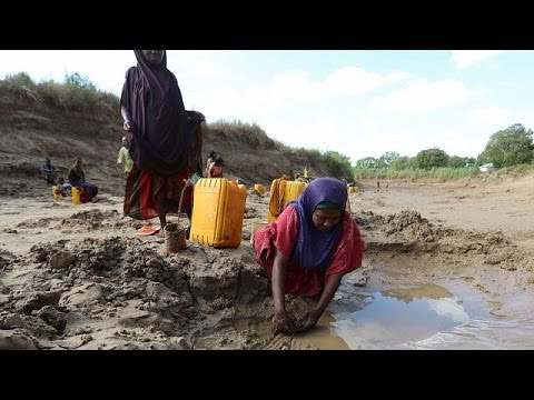 UN appeals for food aid in Somalia