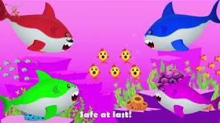 **COCUK $ARKILARI**ABONE OL**Baby Shark Dance   Sing and Dance! Animal Songs for Children